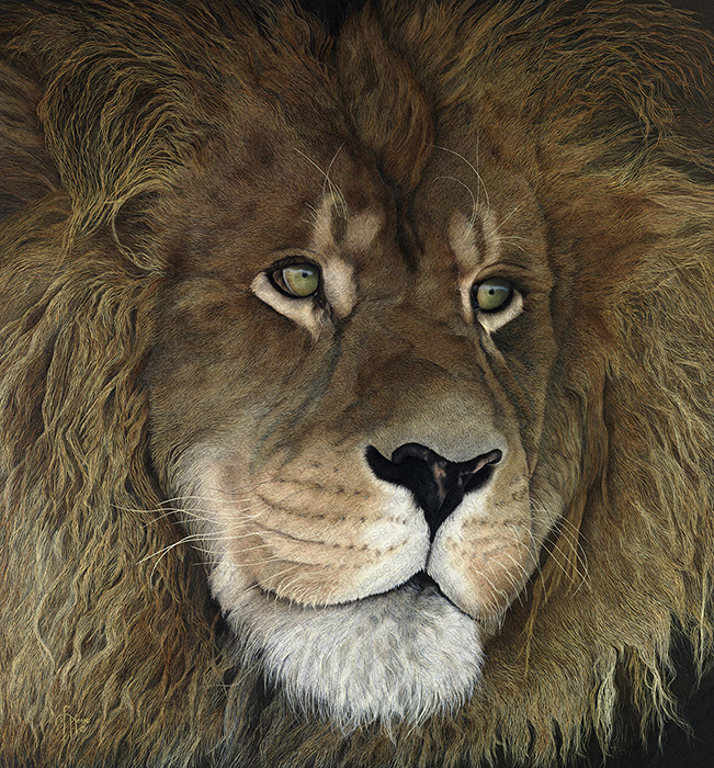 Wildlife artist-The King