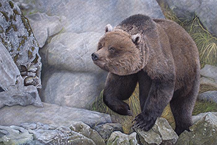 Wildlife artist-Le randonneur